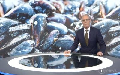 Aquaculture Futures