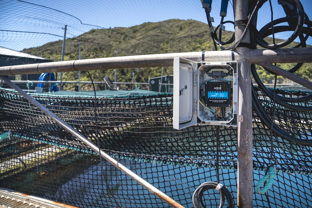King Salmon farms water quality monitoring