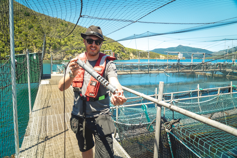 water salinity monitoring
