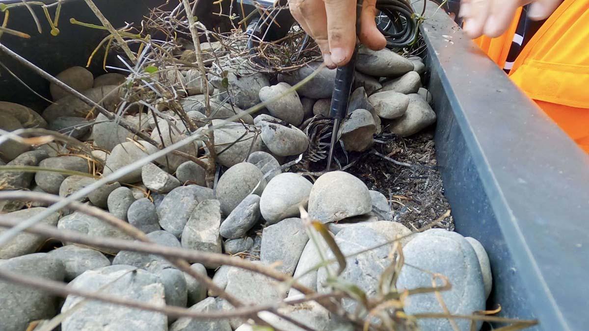 Natural Habitat soil sensor installation