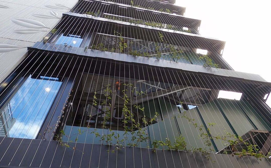 Natural Habitats uses IoT soil monitoring to manage plant health in roof gardens