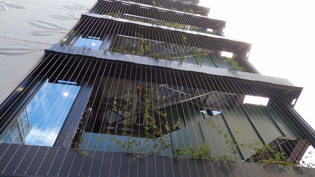Natural Habitat installation of a green wall and roof garden