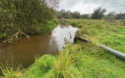 Environmental Water Monitoring