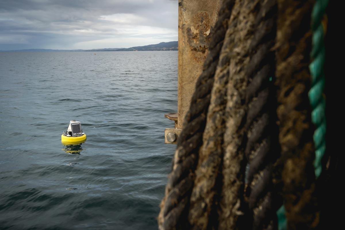 Aquaculture farms in harsh marine environments
