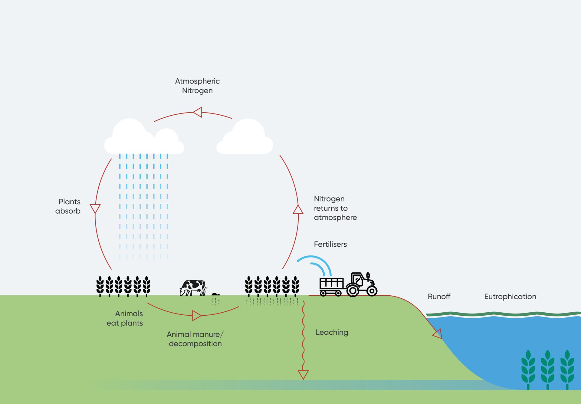 Nitrate monitoring cycle
